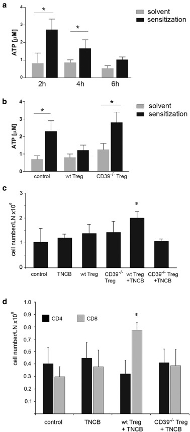 Down Regulation Of Cd62l Shedding In T Cells By Cd39